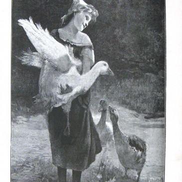 1902-09-14-p