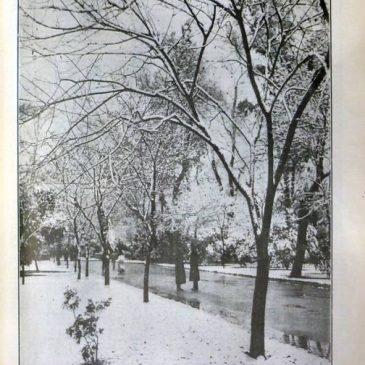 1907-02-17-p