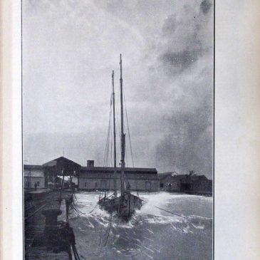 1906-02-25-p