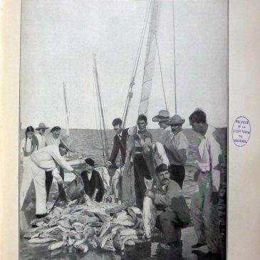 1904-03-06-p