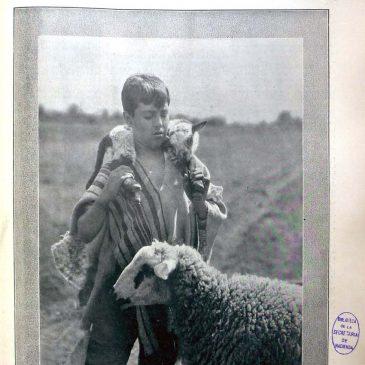 1904-03-20-p