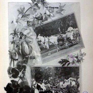 1904-04-17-p
