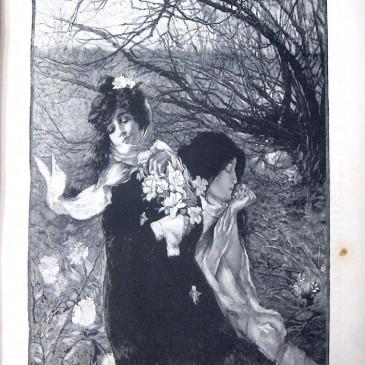 1902-02-02-p