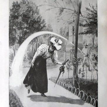 1896-11-15-p
