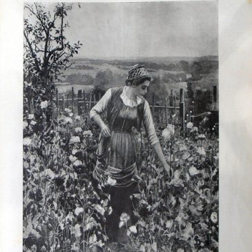 1899-06-04-p