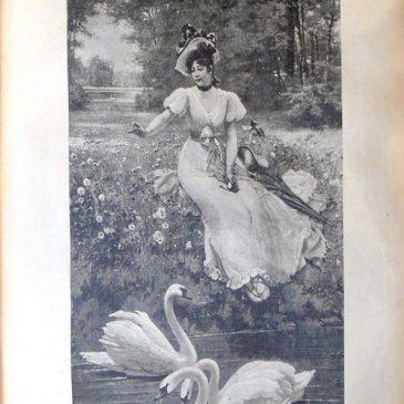 1896-07-26-p
