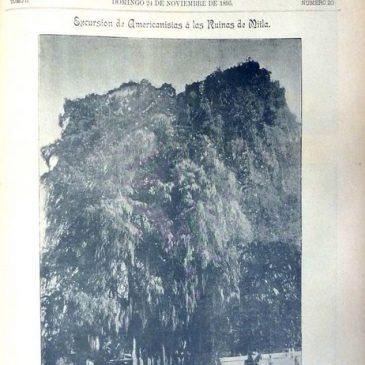 1895-11-24-c
