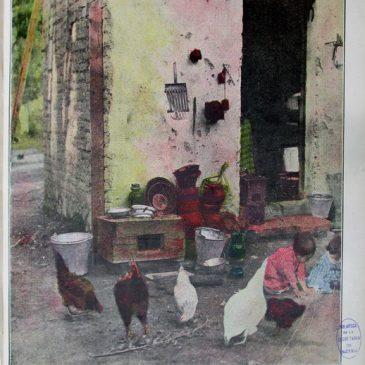 1911-11-19-c