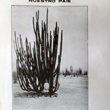 1912-11-24-p