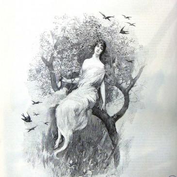 1901-10-06-p