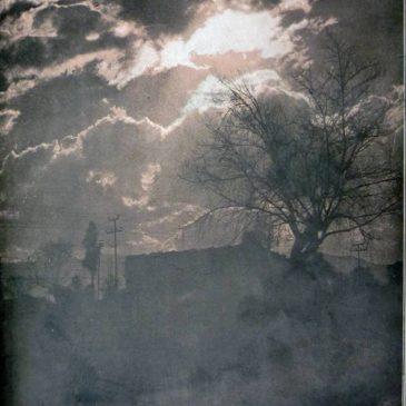 1910-02-20-c