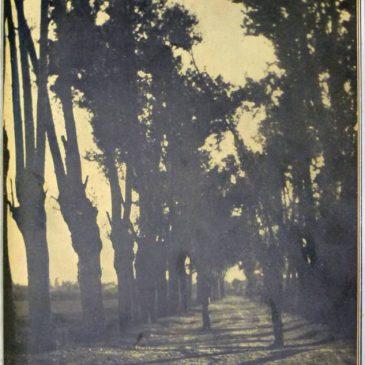 1910-04-03-c