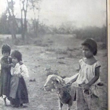 1910-04-24-c