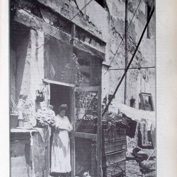 1906-05-06-p