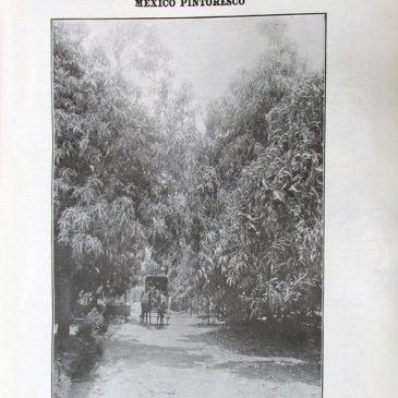 1911-07-30-p