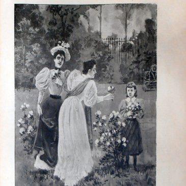 1896-05-03-p