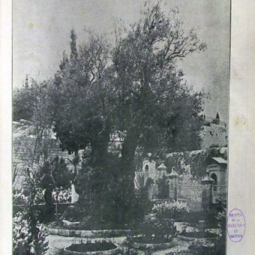 1914-04-05-c