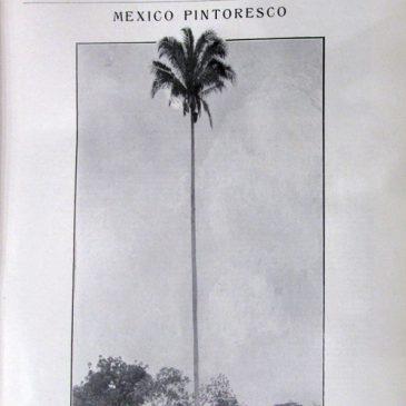 1913-07-20-p