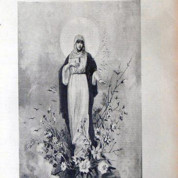 1896-06-07-p