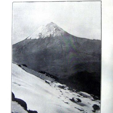 1911-01-08-p